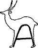 33 Волшебный мелок/ Синкен Хопп