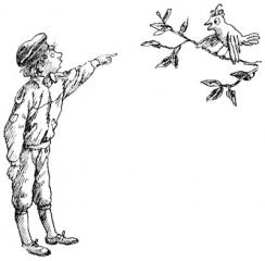 15 Синкен Хопп. Юн и Софус. Иллюстрации